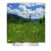 White Mountains Shower Curtain