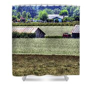 White Mustard Sheds 1584 Shower Curtain