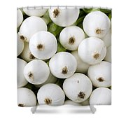 White Onions Shower Curtain by John Trax