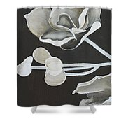 White Orchid First Section Shower Curtain