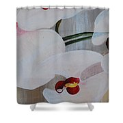 White Orchid Light Background Middle Section Shower Curtain