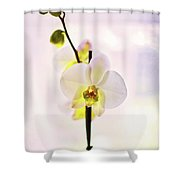 White Orchid V2 Shower Curtain