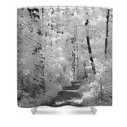 White Path Shower Curtain