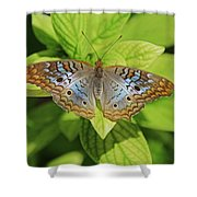 White Peacock Butterfly I Shower Curtain