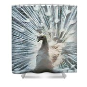 White Peacock Shower Curtain