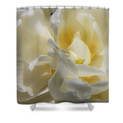 White Peony Tulip Detail Shower Curtain