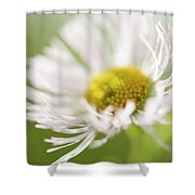 White Petal Flower Abstract Shower Curtain