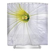 White Petunia Wall Art Shower Curtain