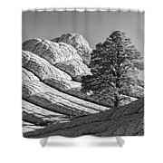 White Pocket Shower Curtain