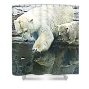 White Polar Bear With Baby Shower Curtain