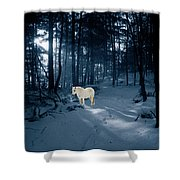 Spirit Pony In A Blue Wood Shower Curtain