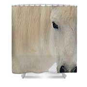 White Pony In Profile Shower Curtain