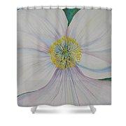 White Poppy Shower Curtain