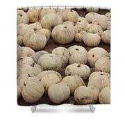 White Pumpkins Shower Curtain