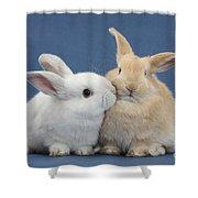 White Rabbit And Sandy Rabbit Shower Curtain