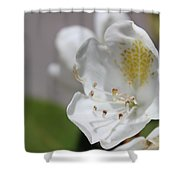 White Reaching Out Shower Curtain