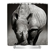White Rhinoceros  In Due-tone Shower Curtain