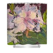 White Rhodedendrons Shower Curtain
