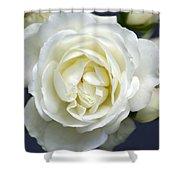 White Rose Bloom Shower Curtain