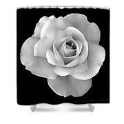 White Rose Flower In Black And White Shower Curtain