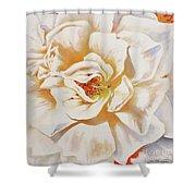 White Rose Shower Curtain