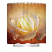 White Rose On Deep Texture Shower Curtain