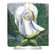 White Rose One Shower Curtain