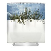 White Sand Green Grass Blue Sky Shower Curtain