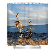 White Sands Yucca Row Shower Curtain
