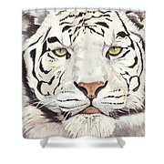 White Silence Shower Curtain