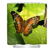 White Spotted Butterfly Shower Curtain