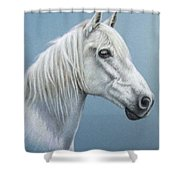 White Stallion Shower Curtain