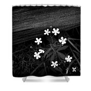 White Stars Shower Curtain