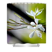 White Stem Flowers Shower Curtain
