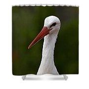 White Stork 5 Shower Curtain