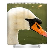 White Swan Profile Shower Curtain