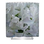 White Sweetpeas Shower Curtain