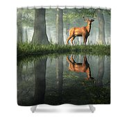 White Tailed Deer Reflected Shower Curtain