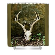 White-tailed Deer Skull In The Woods Shower Curtain