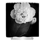 White Tenderness Shower Curtain