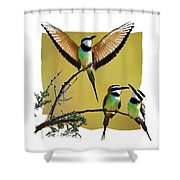White Throated Bee Eater Pf Shower Curtain