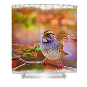 White Throated Sparrow - Digital Paint 3 Shower Curtain