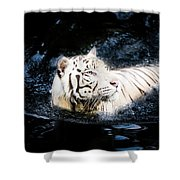 White Tiger 21 Shower Curtain