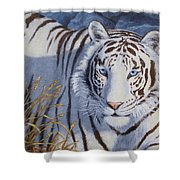 White Tiger - Crystal Eyes Shower Curtain by Crista Forest
