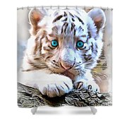 White Tiger Cub Shower Curtain