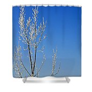 White Tree Blue Sky Shower Curtain