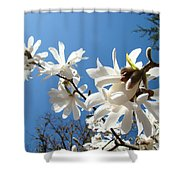 White Tree Flowers Art Prints Magnolia Blue Sky Floral Baslee Troutman Shower Curtain