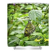White Tree Nymph Shower Curtain