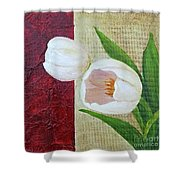 White Tulips Shower Curtain by Phyllis Howard