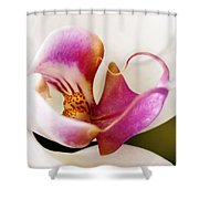 White Veil Orchid Shower Curtain